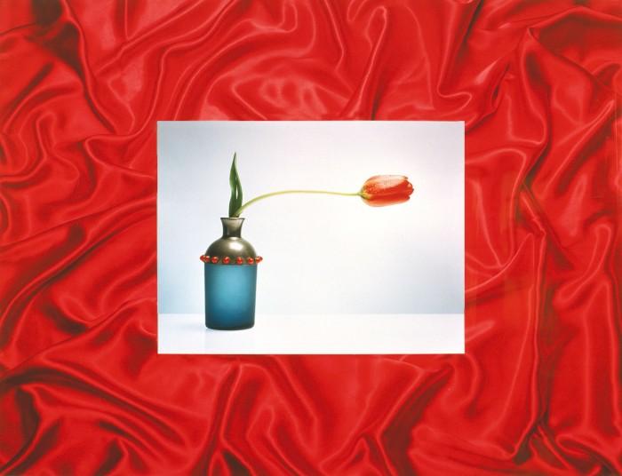 La elegancia perversa del tulipán equilibrista y curioso. 60x80 cm.