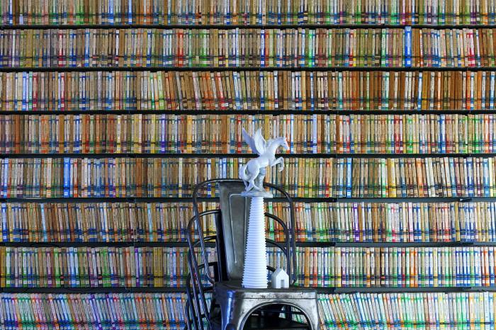 Escenarios para la Confrontación. Biblioteca con Pegasus. 2013. Papel Kodak Endura Premier siliconado en Metacrilato. 90x135 cm. Edición de 5 copias + 2P/A